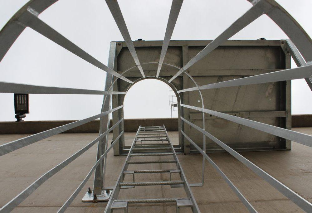 ladder-cage
